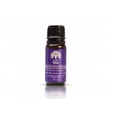 Масло для волос аргановое Ga.Ma GT9901 Argan Oil, 30 мл